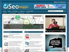 Hot SEO / Search Engine Optimization Marketing WP Blog Website For Sale!
