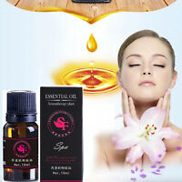 Rose 10ml Aromatherapy Essential Oils 100% Natural Pure Essential Oil Fragrances