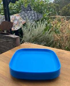 TUPPERWARE SQUARE PLATE SET OF 4 PICNIC EVERYDAY TURQUOISE AQUA BLUE
