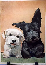 Sealyham Terrier, Scotty Puppy Print, Lithograph, 1941, Ready to Frame, Puppies