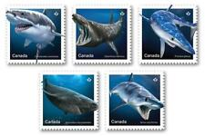 """2018 Canada ~ NEW RELEASE ~ SHARK Stamps ~ ALL 5 """"P"""" Singles MNH ~ FREE SHIPPING"""