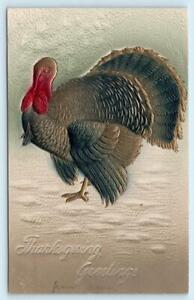 THANKSGIVING GREETINGS Airbrushed Embossed TURKEY c1910s PFB Postcard