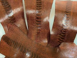 Ostrich Legs Skin Leather Bordeaux  (%100 Genuine Ostrich Leather)