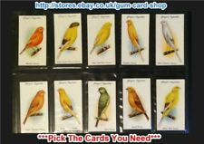 Individual/Type Cards Birds Collectable Player's Cigarette Cards
