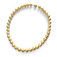 Golden Real South Sea Cultured Pearl Strand Necklace Solid 14k Yellow Gold AU585