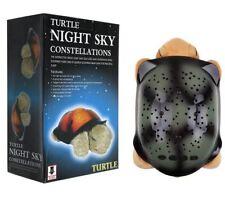 Lights in the Night #MW-NL-300589 Turtle night light