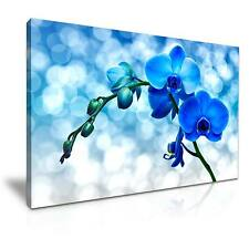 Large Beautiful Orchid Flower Canvas Wall Art Picture Print A1 76x50cm 14