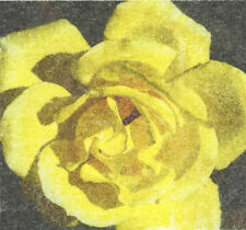 Yellow rose photo transfer print, hand pulled image transfer print home decor