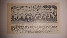 Alpine Cowboys West Texas New Mexico 1949 Baseball Team Picture