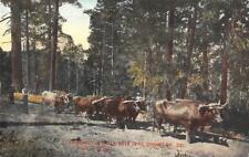 Lumbering In Early Days, El Dorado County, CA Logging ca 1910s Vintage Postcard