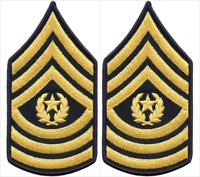 2 Pair Army Command Sergeant Major E-9 Blue Gold Rank Chevron Patches - Female