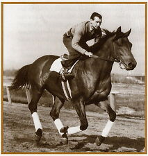 SEABISCUIT: An American Legend (Illustrated Collector's Ed.), Laura Hillenbrand