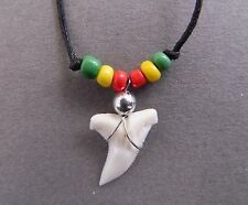 Real Shark Tooth Necklace Rasta Genuine Sharks Teeth Pendant 1.5cm