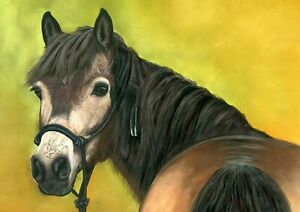 Exmoor Pony Pastel Print from an Original Soft Pastel Painting