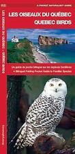 A Pocket Naturalist Guide: Les Oiseaux du Québec - Quebec Birds : Un Guide de...