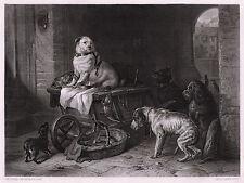 "Striking 1800s Edwin LANDSEER Antique Engraving ""Jack in the Office"" SIGNED COA"