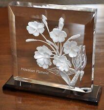 "Hawaiian Plumeria 3-Dimensional Clear Acrylic Plaque 5"" Tall"