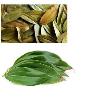 Dried Cinnamon Leaves 20+ Ceylon Herbal Drink Healthy Tea Fresh Organic Natural