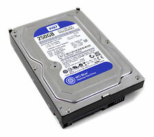 Western Digital WD2500AAKX Blue 250GB interne Festplatte 3,5 Zoll 7200rpm SATA