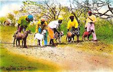 Tobago Buccoo Goat Race Jockey's  Postcard