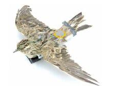 Allodola impagliata ali battenti con porta batterie incorporato  per gioco allod