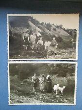 Kinder mit Kiepe Ziege Ziegen goat  chèvre 3 x echt Foto AK um 1930
