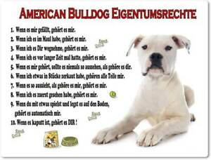 Warnschild - 20x30cm -  Lustige Eigentumsrechte - American Bulldog