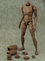 Narrow Shoulder 1:6 Figure African American Body for Hot Toys TTM18 TTM19