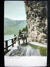 Norway~1908 Hardanger~Farmer on Horse Pulled Wagon~Rare