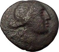 AMPHIPOLIS in MACEDONIA 148BC RARE R1 Ancient Greek Coin ARTEMIS & GOATS i57655