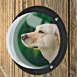 Acrylic pets Dogs Cats House Slight window Fence safe Flap Door Window Dome