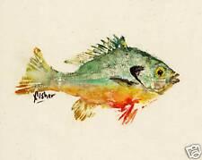 Gyotaku Fish Rubbing - Redbreast