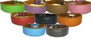 Leather Dog Collar Staffy Staffordshire Bull Terrier Bulldog 6 Sises 9 Colours