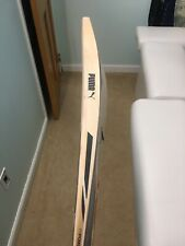 Used Puma EvoPower SE cricket bat