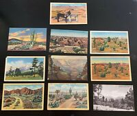 Lot of 10 Original Vintage Postcards - Arizona - Flagstaff, Grand Canyon, Cacti+