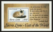 Seal Point Ragdoll Cat * Int'l Cat Postage Stamp Art * Great Gift Idea *