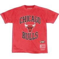 Chicago Bulls Mitchell & Ness NBA Vintage Crest Logo T-Shirt - Faded Red
