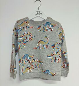 Dinosaur Sweatshirt Top Jumper Dino 5 6 Years