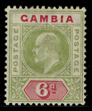 GAMBIA EDVII SG64, 6d olive-green and carmine, M MINT. Cat £25.