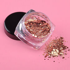 Champagne/Rose Gold Fine Dust Glitter Nail Art Eye Shadow