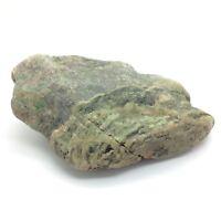 31 mm in diameter 31 mm hollow spreaders in Mexican green jade Lot Tzotzil