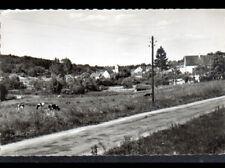 DOMPTIN (02) BOVINS en PATURAGE , VILLAS & EGLISE vers 1950-1960