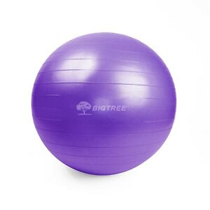 25.5″ (65 cm) Yoga Ball Exercise Core Stability Strength Anti-Burst Purple