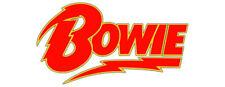 David Bowie Rock Music Stickers