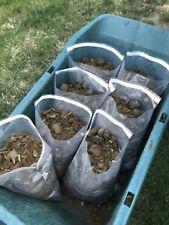 Bagged Horse Manure 2-gallons Fertilizer Garden Nutrient Compost