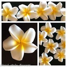 "2.5"" Hawaiian Plumeria  Foam Flower Hair Clip  White w/ Yellow Wedding Bridal"