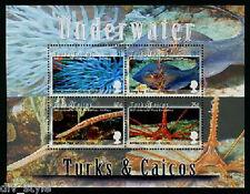 Sea Creatures souvenir Feuille de 4 Timbres,MNH Turks & Caïques 2008 Poisson