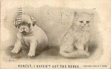 CARTE POSTALE POSTCARD ILLUSTRATEUR V.COLBY CAT HONEST I HAVEN'T GOT THE NERVE