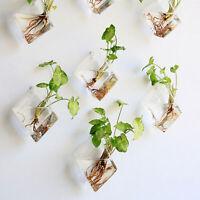 Newly Natural Wall Hanging Plant Terrarium Glass Planter Diamond Baskets Pots