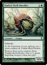 THALLID SHELL-DWELLER Time Spiral MTG Green Creature — Fungus Com